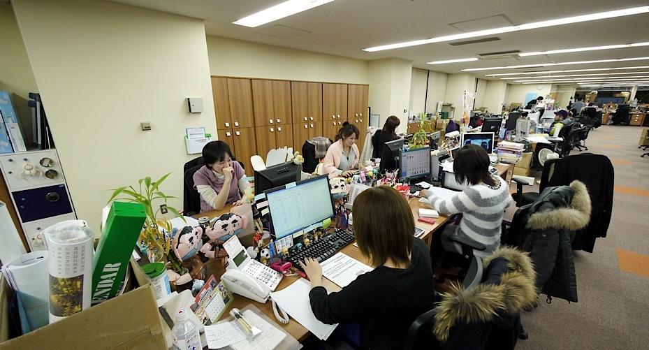 Company offices ladies